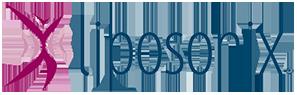 Liposonix Logo